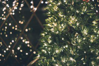 Green Christmas tree with white Christmas lights